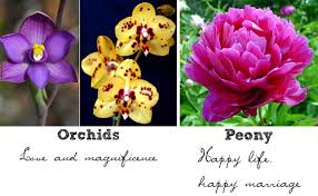 wedding flowers meaning are the wedding flower represent happy and marriage