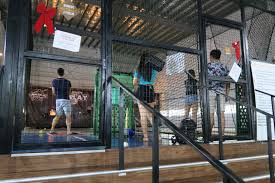 places to go during the holidays homerun baseball singapore