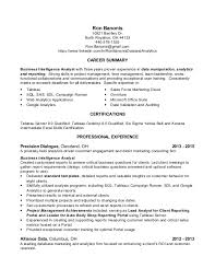 Analytics Resume Examples by Simple Career Summary Plus Alliance Data Data Analyst Resume