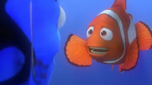 100 nemo pictures finding nemo signs u0027re obsessed