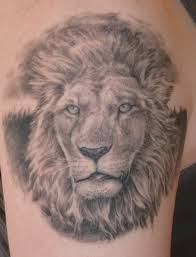 download lion tattoo pec danielhuscroft com