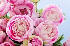 Flower Decoration For Bedroom Gardening Ideas U0026 Tips Southern Living