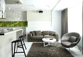 studio apartment furniture layout ideas home designs cozy area rug