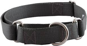 buy 10 martingale heavyduty collars various sizes
