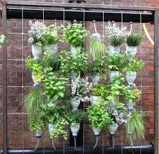 window herb harden amazing window herb garden pictures inspiration landscaping ideas