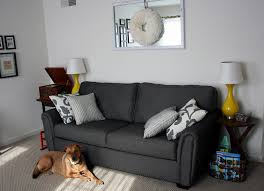 Grey Sofas In Living Room Minimalist Apartment Living Room With Dark Grey Sofa And White