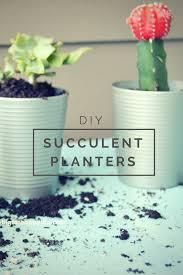 Succulent Planter Diy by Diy Succulent Planters My Big Fat Happy Life
