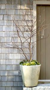 so lift your potted plants in the winter on u2013 fresh design pedia