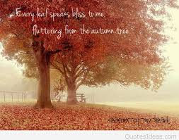 autumn tree quote with leaves photo