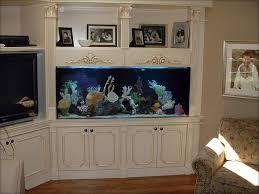 Fish Tank Reception Desk Custom Cabinetry And In Wall Installation Blue Planet Aquarium