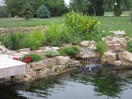 reed bed bog grey water filter water garden pinterest water