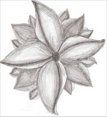pencil drawing for beginners picmia drawings pinterest