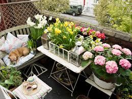 balkon blumen tipps und tricks die schönsten balkonblumen für sie