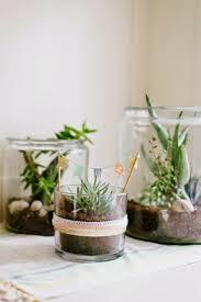 Cute Succulent Pots 48 Best Out And About Melbourne Images On Pinterest Melbourne