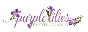 Purple Lillies Purple Lilies Photography Purple Lilies Photography