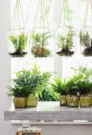 best 25 string garden ideas on pinterest hanging gardens
