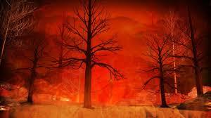 Graham Wa Wildfire by The Latest On The Wildfires In Tennessee