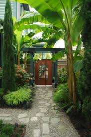 best 25 tropical dog gates ideas on pinterest tropical fencing