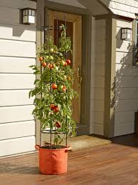 garden planters for vegetable gardens tomato growing and more