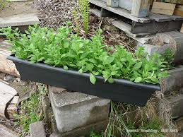 how to build flower boxes balcony planter boxes for railings ideas