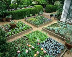 beautiful raised bed vegetable garden