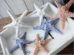 starfish decorations starfish decorations for wedding dtmba bedroom design starfish