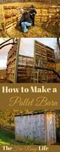 How To Build A Simple Wood Shed by The 25 Best Pallet Shed Plans Ideas On Pinterest Shed Plans