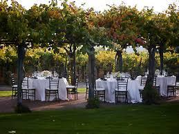 arbor wedding venues concannon vineyard wedding location livermore wedding venue tri
