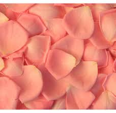 where can i buy petals buy orange petals at wholesale price for wedding