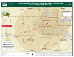Iowa State Map With Cities by Iowatreepests Com Emerald Ash Borer Locations In Iowa And The