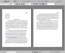 Paragraph Writing Template  best    essay structure ideas on     Five Paragraph Essay Outline