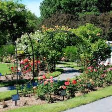 james p kelleher rose garden 47 photos parks 73 park dr
