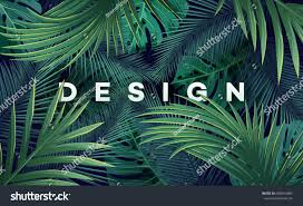 tropical rainforest native plants bright tropical background jungle plants vector stock vector