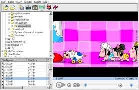 Flash Player Flash Player