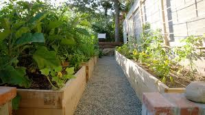 How To Start A Garden Bed How To Start A Raised Bed Veggie Garden Sunset