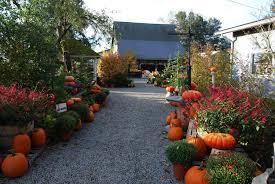 Best Pumpkin Patch Snohomish County by Gordon Skagit Farms