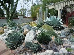 Front Yard Desert Landscape Mediterranean Exterior 465 Best Desert Landscaping Ideas Images On Pinterest Cacti