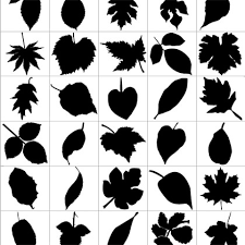imagenes vectoriales gratis hoja siluetas vectoriales gratis gráfico siluetas de vector vector