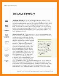 doc 585670 exec summary template u2013 31 executive summary
