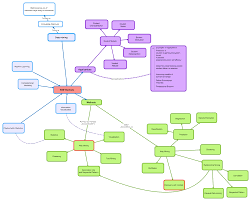 What Is A Concept Map Imogen Bertin Confused Of Cork What Is A Mooc