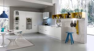 contemporary kitchen wooden lacquered matte system