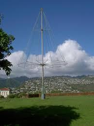 the famous kaimuki christmas tree