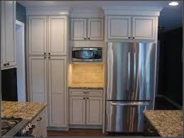 Kitchen Fridge Cabinet How To Decorate A Kitchen Counter Black Color Metal Handles Built