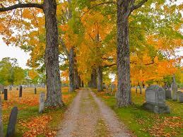 hampshire fall foliage travel side