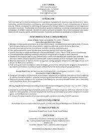 standard curriculum vitae samples curriculum vitae professional