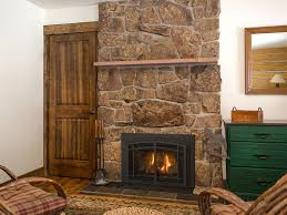Fireplace Insert Screen by Chaska 25 Gas Fireplace Insert Gas Fireplaces Kozy Heat