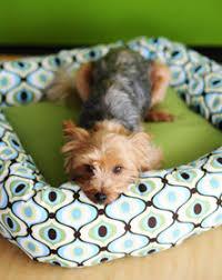 Homemade Dog Beds 2 Hour Diy Dog Bed Allfreesewing Com