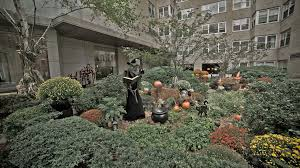 halloween scene wallpaper scary witch casting spells in spooky garden halloween scene stock