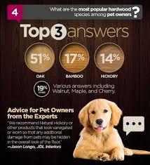 what hardwood flooring species is best for dogs macwoods