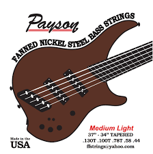 Medium Light Guitar Strings by Payson Fanned Bass Srings Ns Medium Light